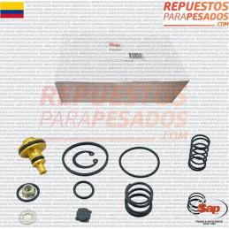 JUEGO REPVALVULA PP7 - 287367 SAP